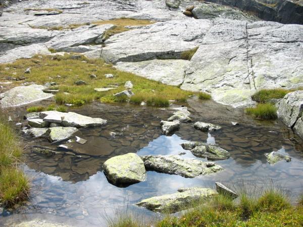 Връх, отразен в малко езерце