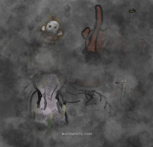 12-animals-in-fog