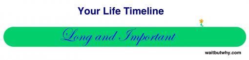 24-life-timeline