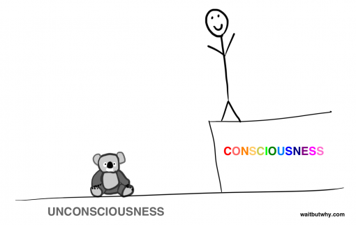 3-consciousness-binary
